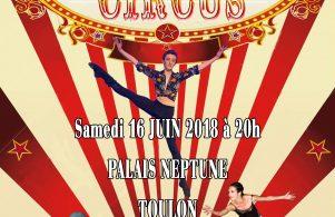 Marius Circus - Gala 2018