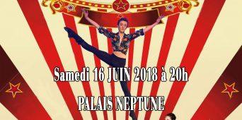 Marius Circus -Gala 2018